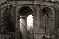 Palace of Fine Arts- San Francisco