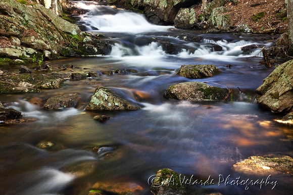 Bubble Brook Creek - Acadia National Park